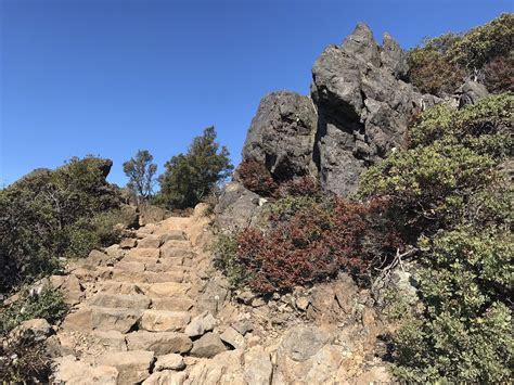 Verna Dunshee Trail and Plank Trail at Mount Tam East Peak