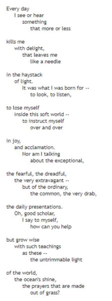"""Analysis of Poem """"Mindful"""" by Mary Oliver 