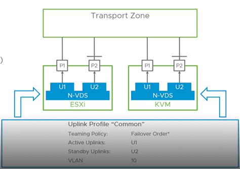 What is the VMware NSX-T Virtual Distributed Switch N-VDS