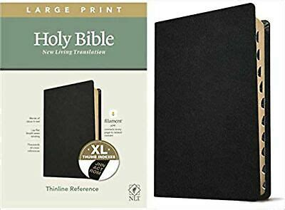NLT Large Print Thinline Reference Holy Bible (Red Letter