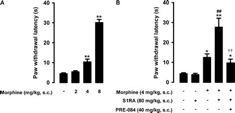 Frontiers | Modulation by Sigma-1 Receptor of Morphine