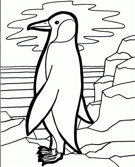 Get This Penguin Coloring Pages Free Printable 31702