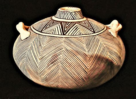 Anasazi Feather Canteen - Ancient Pottery   Starling Black