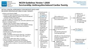 Cardiovascular Health and Risk Management in Cancer